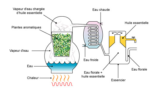 distillation_FR