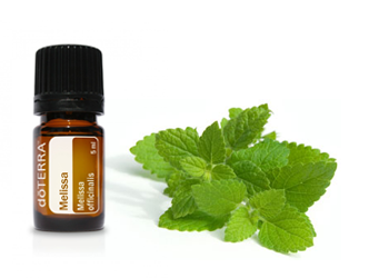 melissa-essential-oil