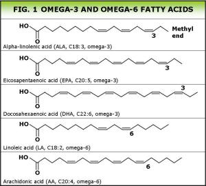 Omega fatty acids UK